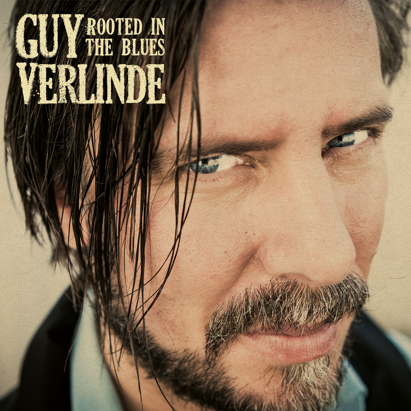 rooted in the blues - guy verlinden